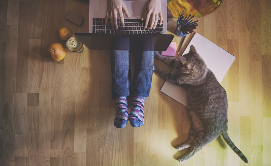 what do people think about working from home